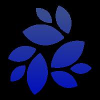 NKN (NKN) logo